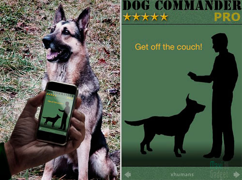 dog-commander-iphone